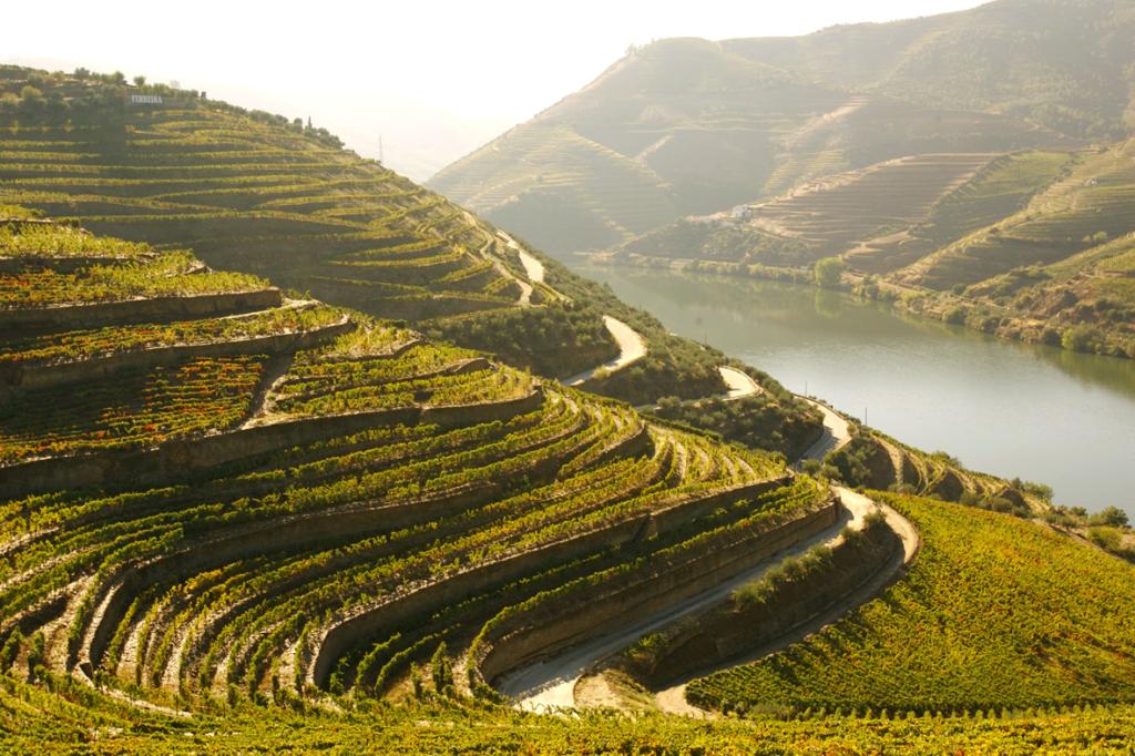 primeira-denominação-de-origem-para-vinhos-douro-portugal