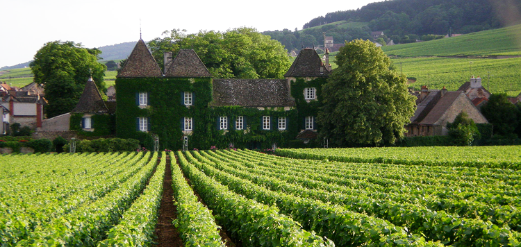 grand-cru-vinhos-da-borgonha